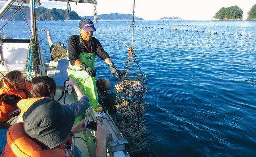 牡蠣を味わう里海体験
