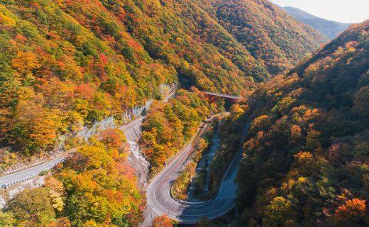 絶景・釡石仙人峠の紅葉サイクリング